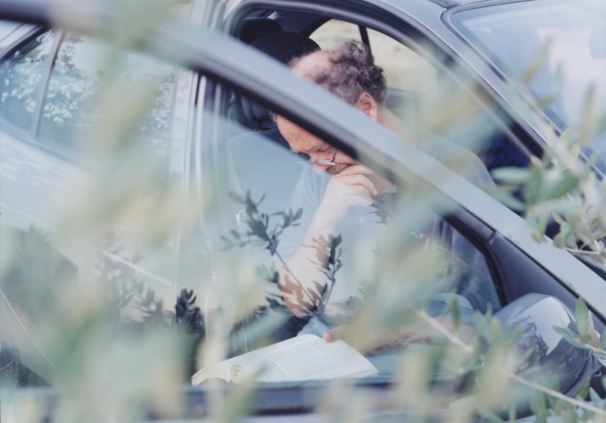 READING IN THE OLIVE TREES © 2012, JoAnn Verburg
