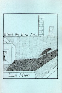 What the Bird Sees book cover
