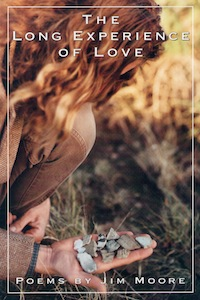 The Long Experience Of Love by Jim Moore book cover